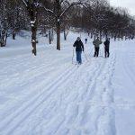 Die Langlauf-Loipe im Westpark 4