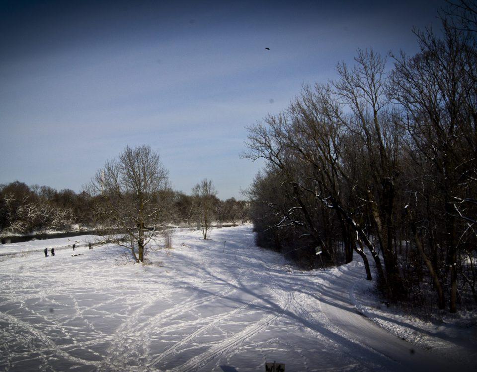 Winterspaziergang an der Isar 15