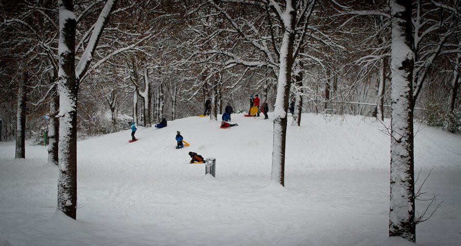 Schlittenfahren im Westpark 2