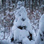 Winterspaziergang durch den Perlacher Forst 5