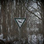 Die Langlauf-Loipe am Nymphenburger Schloßpark 14
