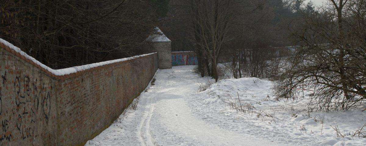 Die Langlauf-Loipe am Nymphenburger Schloßpark 2