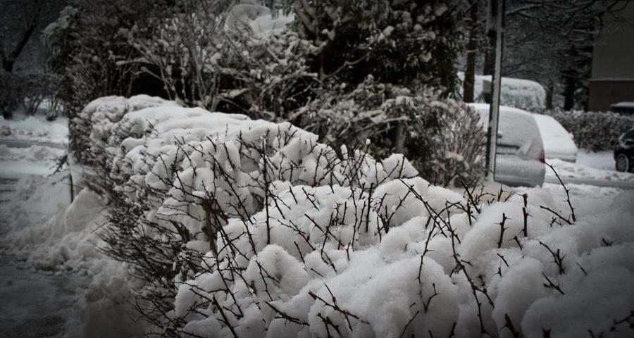 Überaschung, der Winter ist noch mal da 2